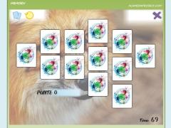 12 carte